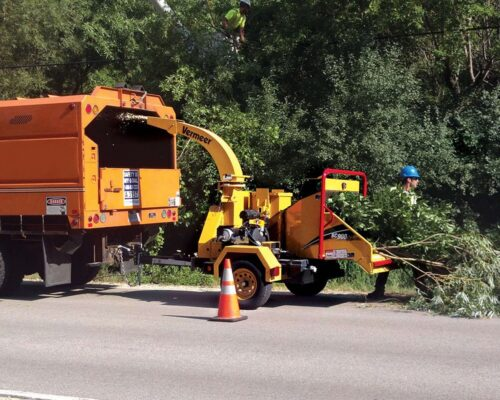 Commercial Tree Services-Polk City FL Tree Trimming and Stump Grinding Services-We Offer Tree Trimming Services, Tree Removal, Tree Pruning, Tree Cutting, Residential and Commercial Tree Trimming Services, Storm Damage, Emergency Tree Removal, Land Clearing, Tree Companies, Tree Care Service, Stump Grinding, and we're the Best Tree Trimming Company Near You Guaranteed!