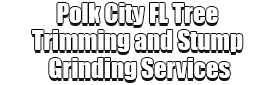 Polk City FL Tree Trimming and Stump Grinding Services Logo-We Offer Tree Trimming Services, Tree Removal, Tree Pruning, Tree Cutting, Residential and Commercial Tree Trimming Services, Storm Damage, Emergency Tree Removal, Land Clearing, Tree Companies, Tree Care Service, Stump Grinding, and we're the Best Tree Trimming Company Near You Guaranteed!