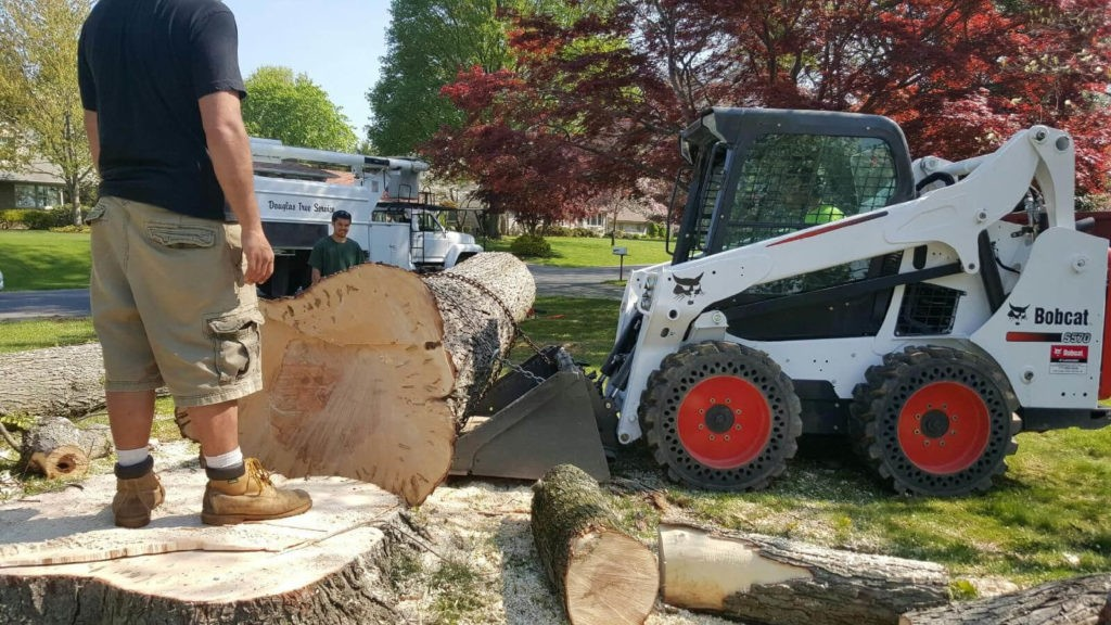 Services-Polk City FL Tree Trimming and Stump Grinding Services-We Offer Tree Trimming Services, Tree Removal, Tree Pruning, Tree Cutting, Residential and Commercial Tree Trimming Services, Storm Damage, Emergency Tree Removal, Land Clearing, Tree Companies, Tree Care Service, Stump Grinding, and we're the Best Tree Trimming Company Near You Guaranteed!